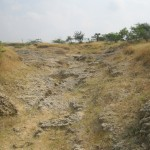 World Fossil Society found a new Mio-Pliocene fossil bed along the eastern coast of indian subcontinent (Stock photo-4)