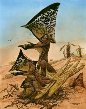 The new pterosaur Caiuajara dobruskii had a sail-like crest that became larger relative to the rest of the body as the pterosaur matured. (Maurilio Oliveira/Museu Nacional-UFRJ)