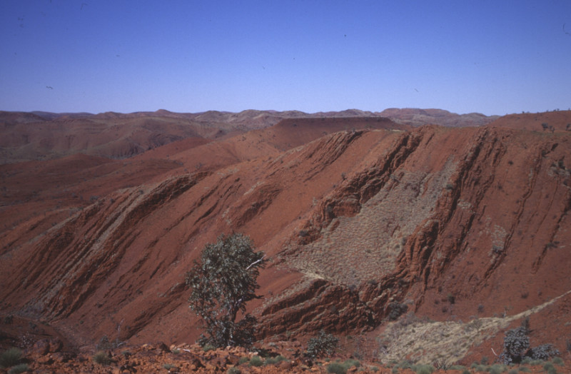 The oldest samples are sedimentary rocks that formed 3.2 billion years ago in northwestern Australia. They contain chemical evidence for nitrogen fixation by microbes. Credit: R. Buick / UW