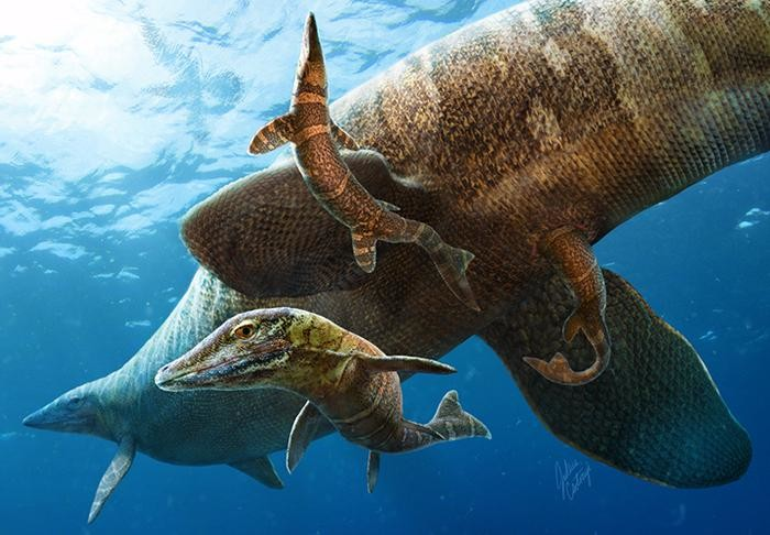 Giant sea lizards in the age of dinosaurs: A new beginning for baby mosasaurs