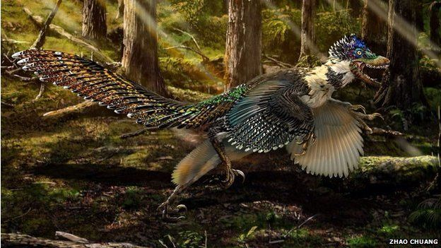 An artist's impression of Zhenyuanlong shows how strange this feathered beast may have looked