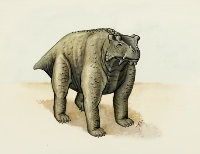 About the same size as a cow, this pre-reptile also stood the same way -- upright with its legs underneath. It may be the earliest known creature to do so, according to a new study. Credit: Morgan Turner