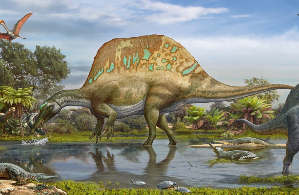 Spinosaurus may have eaten its prey much like a giant pelican or modern day snakes. (Credit: Sergey Krasovskiy)