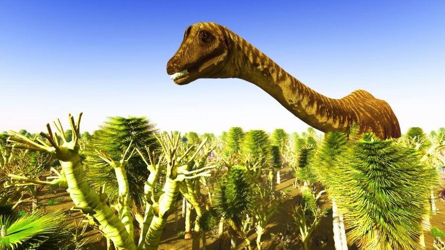 New research suggests that other factors, such as the break-up of continental land masses, sustained volcanic activity and other ecological factors, may possibly have influenced the gradual decline of dinosaurs. The long-necked giant sauropod dinosaurs were in the fastest decline, whereas theropods, the group of dinosaurs that include the iconic Tyrannosaurus rex, were in a more gradual decline before the asteroid hit. Credit: © satori / Fotolia