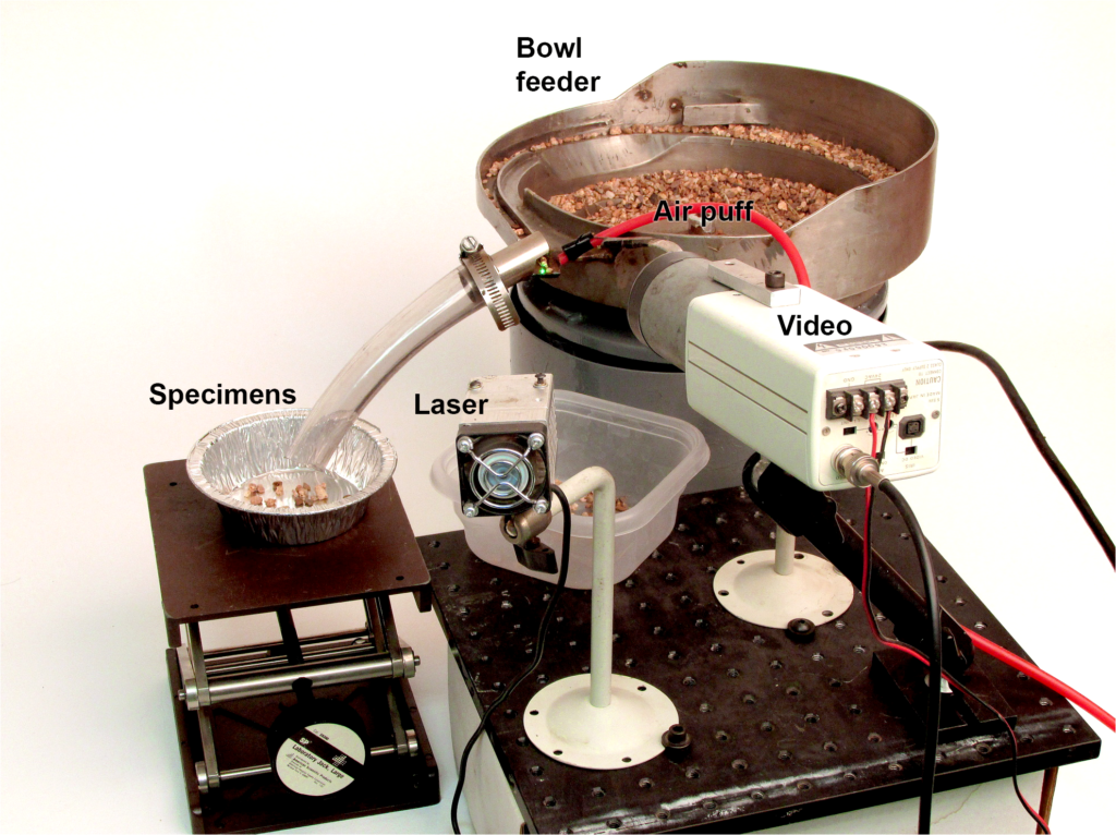 Automated fossil sorter. Proof-of-concept prototype automated micro-fossil picker. The feeder bowl guides a stream of matrix under the laser while a video camera detects 'blobs' of a certain size and brightness. Fluorescing fossils are guided down a tube into a tray by a puff of compressed air