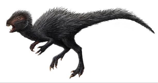 Artistic impression about Fossil skull of Heterodontosaurus tucki