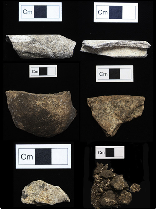 Selection of bone fragments from the Cnoc Coig assemblage used within this research; highlighting the range of sizes, elements and preservation. From top, L-R, ZooMS IDs: seal, pig, remainder human.
