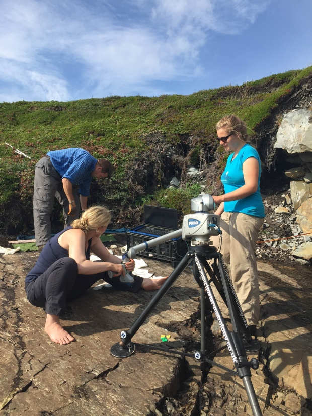 Emily Mitchell, as well as other researchers, are mapping fossils along the coastline in Little Catalina. (Submitted by Emily Mitchell)
