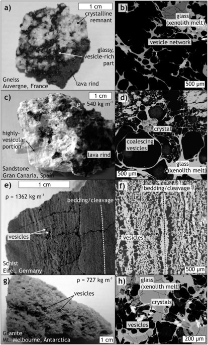 Appearance and structure of examples of frothy xenolith fragments.