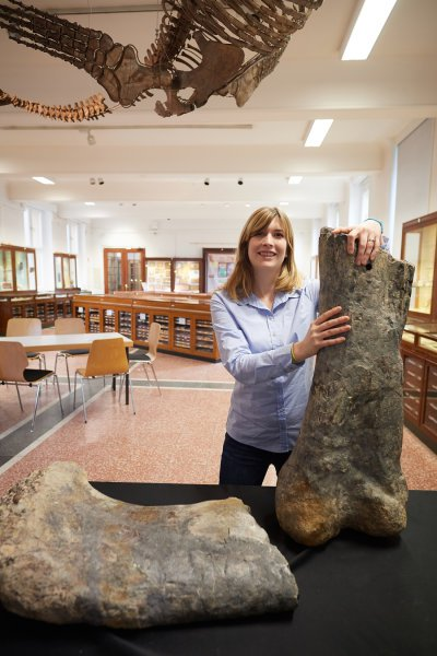 Palaeontologist Jessica Mitchell of the Steinmann Institute, University of Bonn with the thigh bone of the long-necked dinosaur Apatosaurus. Credit: © Photo: Volker Lannert/Uni Bonn
