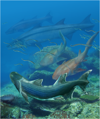 Life restoration of Sparalepis tingi (foreground) and other fauna from the Kuanti Formation. Also in the scene are numerous conodont animals, a pair of the maxillate placoderm Entelognathus (middle distance) and two examples of the osteichthyan Megamastax (background), the largest known Silurian vertebrate. Illustration by Brian Choo, released under Creative Commons Attribution Licence CC BY 4.0, 2016. http://dx.doi.org/10.1371/journal.pone.0170929.g009