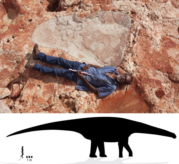 Australia's own Jurassic Park.The biggest sauropod prints are over a metre long