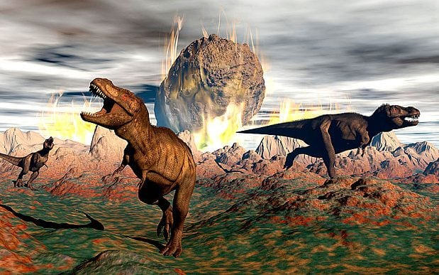 After dinosaurs became extinct 66 million years ago, mammals became diurnal CREDIT: STOCKTREK IMAGES, INC. / ALAMY