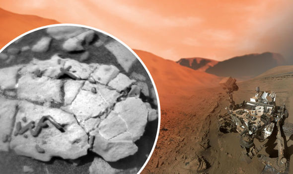 Photographs taken by NASA's Mars rover may show trace fossils on the Red Planet