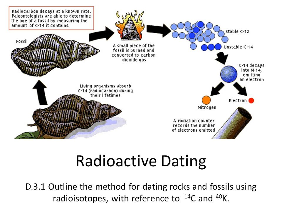 Determine age fossils carbon dating