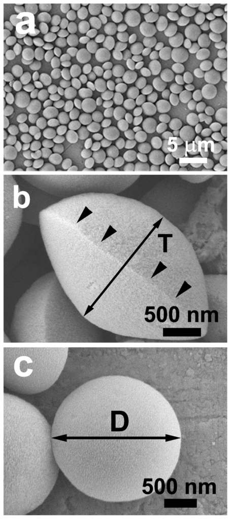 SEM images of discus-like silica particles (sample L5): low magnification (a), the side- (b) and front-view (c) observations of individual particles.