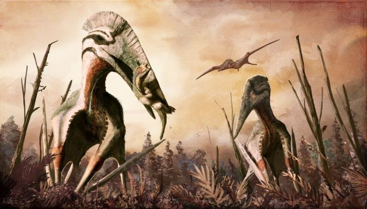 Restoration of the giant azhdarchid pterosaur Hatzegopteryx catching an unsuspecting dinosaur for supper. In addition to carnivory, azhdarchids have been hypothesized to have eaten fish, insects, fruits, hard-shelled organisms or a combination of them all. Credit: Mark P. Witton/CC BY 4.0