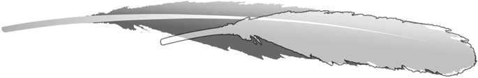 Overlay of the isolated feather MB.Av.100 scaled to the same size as the most similar secondary feather in the wing of the Berlin Archaeopteryx MB.Av.101. Significant foreshortening of the isolated feather does not support its association with Archaeopteryx.